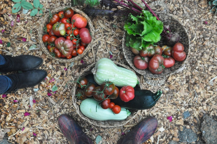 Italian Vegetable Stew ~ (Gluten-Free  Vegan) Sirens  Scoundrels