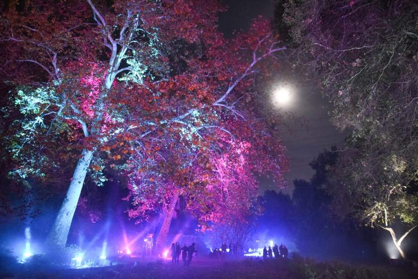 Descanso Gardens Enchanted Forest Of Light 2017 Sirens Scoundrels