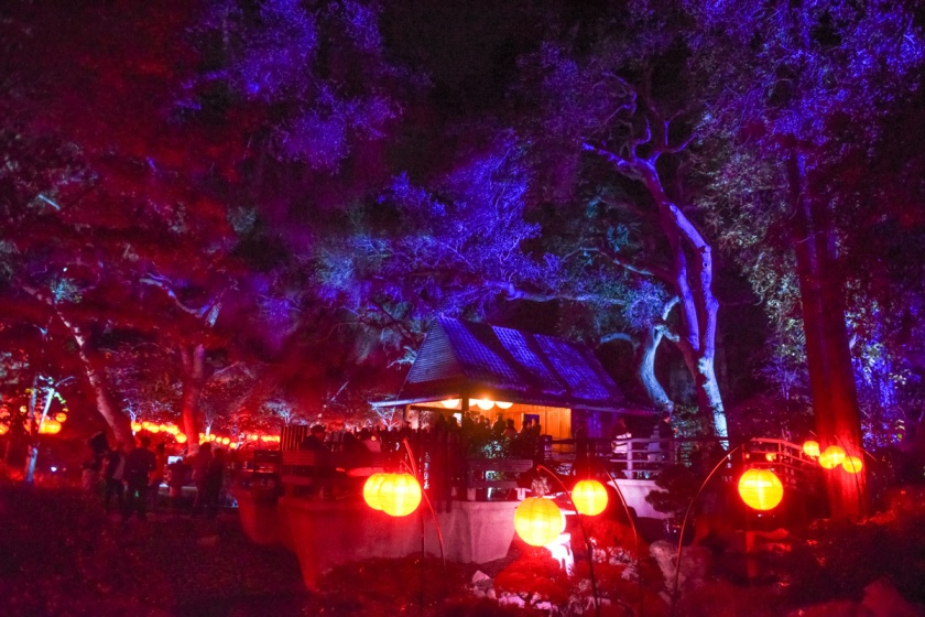Descanso gardens enchanted forest of light sirens - Descanso gardens enchanted forest of light ...